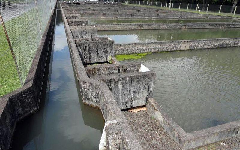 Cresce o investimento em inovação tecnológica para piscicultura na Serra Catarinense